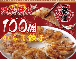 急上昇 国産豚肉 からし餃子 冷凍餃子 100個 送料無料 業務用 おかず ビール sale 工場直売