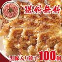 急上昇 黒豚肉入り 冷凍餃子 100個 送料無料 業務用 おかず ビール sale 工場直売 スーパーセール
