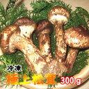 国産松茸 300g(まつたけ)極上松茸(マツタケ)【冷凍】【つぼみ開きミックス】【岩手 北三陸 久慈産 まつたけ】【松…