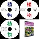 中学受験理科植物DVD全3巻