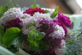 自家用【盛り花・ピンク】フラワーアレンジメント:花束:手土産、記念日(各イベント)、ご自宅、お誕生日