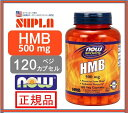 【NOW SPORTS】ナウスポーツ HMB 500mg 120 錠