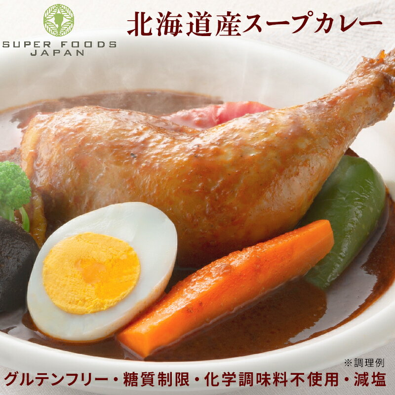 スープカレー レトルト からだ想いの北海道スープカレー 2食(300g×2) 送料無料 1000円ポッキリ 北海道 札幌
