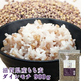 もち麦 国産 令和元年産 滋賀県産 ダイシモチ 900g 送料無料 新麦 雑穀 ダイエット