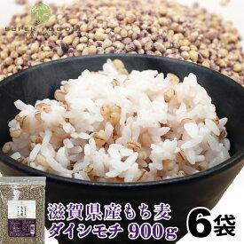 もち麦 国産 令和元年産 滋賀県産 ダイシモチ 5.4kg (900g×6袋) 送料無料 新麦 雑穀 ダイエット