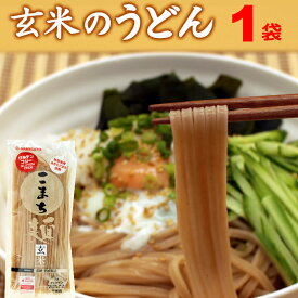 米粉 グルテンフリー お米のうどん こまち麺 玄米 250g (2食入) 半生麺 無塩