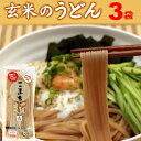 米粉 グルテンフリー お米のうどん こまち麺 玄米 250g×3袋 (6食入) 送料無料 半生麺 無塩