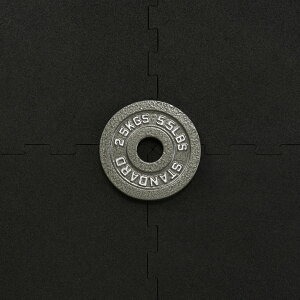 【20日はポイントアップDAY】IROTEC(アイロテック)オリンピックアイアンプレート2.5KG 穴径50mm/バーベル ダンベル ベンチプレス 筋トレ トレーニング器具 トレーニングマシン 鉄アレイ 健康器具