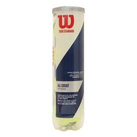 ウイルソン(WILLSON) テニスボール TOUR STANDARD WRT103800 自主練 (メンズ、レディース)