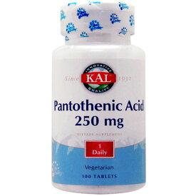パントテン酸(ビタミンB5) 250mg 100粒[サプリメント/健康サプリ/サプリ/ビタミン/パントテン酸/栄養補助/栄養補助食品/アメリカ/国外/タブレット/通販/楽天]