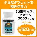 [ お得サイズ ] ビオチン(ビタミンH) 5000mcg(5mg) タブレット 120粒[サプリメント/健康サプリ/サプリ/ビタミン/ビオチン/ビタミンB群/...