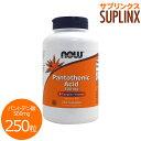 [ お得サイズ ] パントテン酸(ビタミンB5) 500mg 250粒[サプリメント/健康サプリ/サプリ/ビタミン/パントテン酸/n…