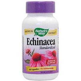 エキナセアエキス 60粒 [サプリメント/健康サプリ/サプリ/植物/ハーブ/エキナセア/栄養補助/栄養補助食品/アメリカ/カプセル]