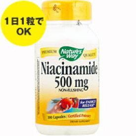 ナイアシンアミド(ビタミンB3) 500mg 100粒[サプリメント/健康サプリ/サプリ/ビタミン/ナイアシン/栄養補助/栄養補助食品/アメリカ/カプセル] ビタミンB3・ナイアシン