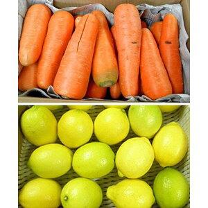 無農薬人参10kg+無農薬国産レモン1kg セット