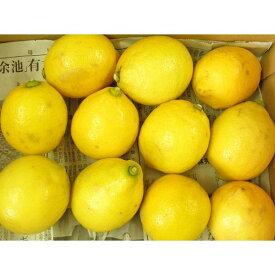 低農薬 瀬戸内レモン(無選別)1kg