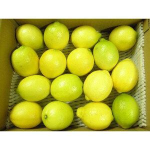 無農薬 瀬戸内レモン(無選別)1kg