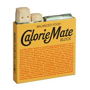 大塚製薬カロリーメイトブロック チーズ4本入×10個セット