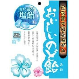 日進医療器株式会社おいしいのど飴青い海の塩飴 70g