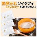 発酵豆乳 ソイケフィ(Soykefy) たね菌 50包袋