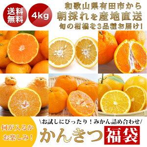 かんきつ 柑橘 詰め合わせ アソート ランダム 3品種 和歌山県産 4kg S〜3Lサイズ混合でお届け 1級2級混合でお届け 送料無料 自宅用 はもちろん お歳暮 お年賀 御歳暮 贈答 ギフト にも 甘い あ