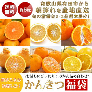 かんきつ 柑橘 詰め合わせ アソート ランダム 2品種 和歌山県産 4kg S〜3Lサイズ混合でお届け 1級2級混合でお届け 送料無料 自宅用 はもちろん お歳暮 お年賀 御歳暮 贈答 ギフト にも 甘い あ