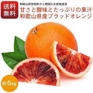 ブラッドオレンジ オレンジ 和歌山県産 5kg S〜3Lサイズ混合でお届け 1級2級混合でお届け 送料無料 ブラッド 有田みかん で有名な和歌山県より産地直送 自宅用 はもちろん お歳暮 お年賀 御歳