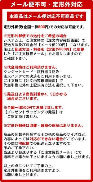 サンスター文具ジッパーつきテープzittekirari(ジッテキラリ)S8578435〜S8578540