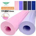 ヨガマット ホットヨガ SPOUT ヨガ 6mm [212024] ヨガラグ ピラティス yoga 天然素材 フィットネス サップヨガ ジム …
