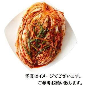 ★売上NO.1★【白菜キムチ1kg】