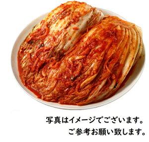 ★業務用 白菜キムチ10kg