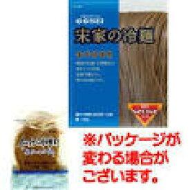 【韓国冷麺】■宋家冷麺の麺160g×10個■麺のみ10個セット商品■