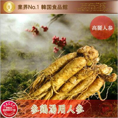 【韓国特産品 朝鮮人参|冷蔵】参鶏湯用 生高麗人参 100g