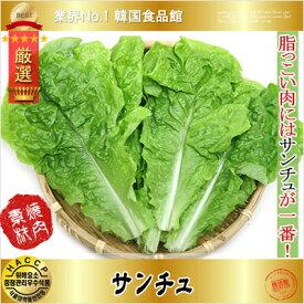 【毎週火曜日入荷】【韓国野菜】焼肉用野菜 サンチュ 100枚【在庫ある場合はすぐ発送】