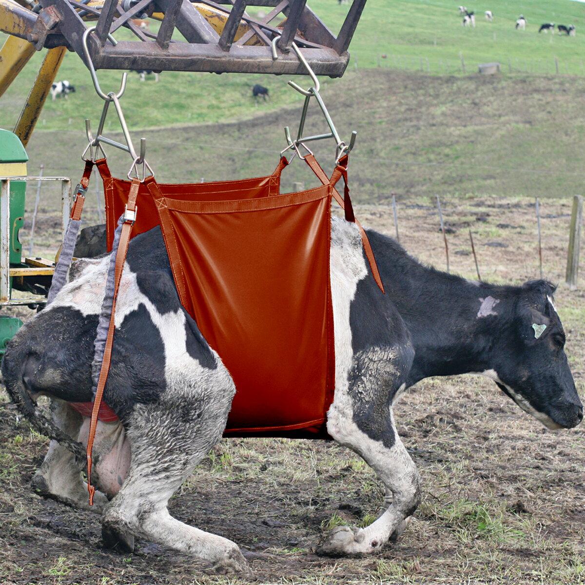 【起立不能の牛に】イージーアップ