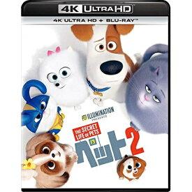 BD/ペット2 (4K Ultra HD Blu-ray+Blu-ray)/パットン・オズワルト/GNXF-2520 [12/4発売]