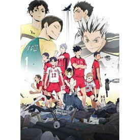 DVD/OVA『ハイキュー!! 陸 VS 空』/OVA/TDV-29289D [1/22発売]