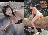 【中古】コレクションカード(女性)/HIT'S! LIMITED ほしのあき トレーディングカード AKI HOSHINO 052 : ほしのあき/レギュラーカード/HIT'S! LIMITED ほしのあき トレーディングカード