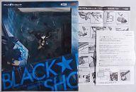 【中古】フィギュア [初期不良対応シール有] ブラック★ロックシューター -animation version- 「ブラック★ロックシューター」 1/8 PVC塗装済み完成品