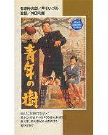 【中古】邦画 VHS 青年の樹
