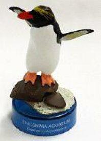 【中古】ペットボトルキャップ マカロニペンギン 「新江ノ島水族館への誘い」