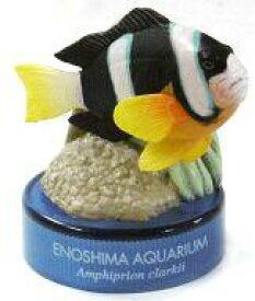 【中古】ペットボトルキャップ クマノミ 「新江ノ島水族館への誘い2」 2004年 セブンイレブン キャンペーン品【タイムセール】