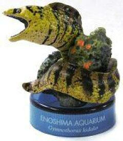 【中古】ペットボトルキャップ ウツボ 「新江ノ島水族館への誘い2」 2004年 セブンイレブン キャンペーン品【タイムセール】