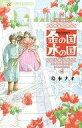 【中古】少女コミック 金の国 水の国 / 岩本ナオ