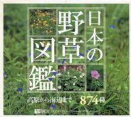【中古】Windows95/98/Mac漢字Talk7以降 CDソフト 日本の野草図鑑
