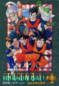 【中古】アニメ系トレカ/ドラゴンボール ビジュアルアドベンチャー'95EX 254 : 無敵のチーム!!