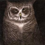 【中古】邦楽CD 小沢健二 / フクロウの声が聞こえる[完全生産限定盤]