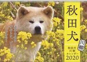 【新品】カレンダー 秋田犬 2020年度カレンダー