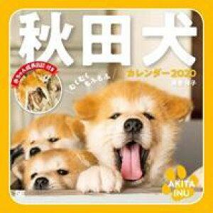 【新品】カレンダー むくむくもふもふ 秋田犬 2020年度カレンダー
