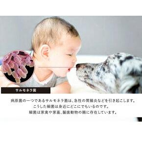 99.9%除菌マスク除菌除菌ウィルス対策紫外線UV除菌ライト除菌灯小型コンパクト除菌ライト